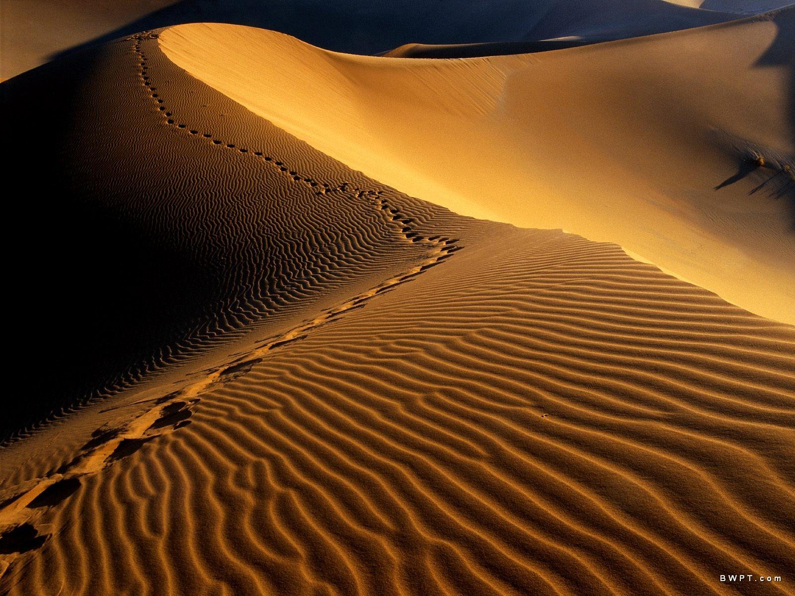 10 Unique Deserts Of The World